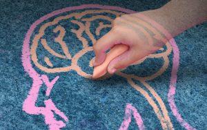 Загадки мозга человека